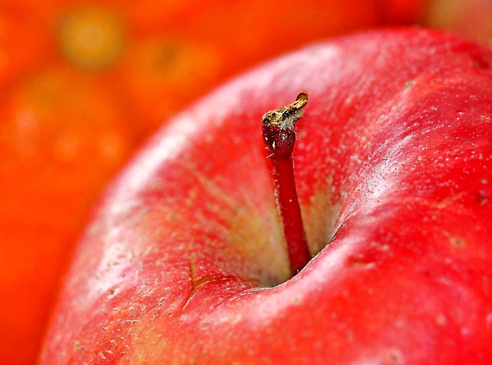Kuva: Omena