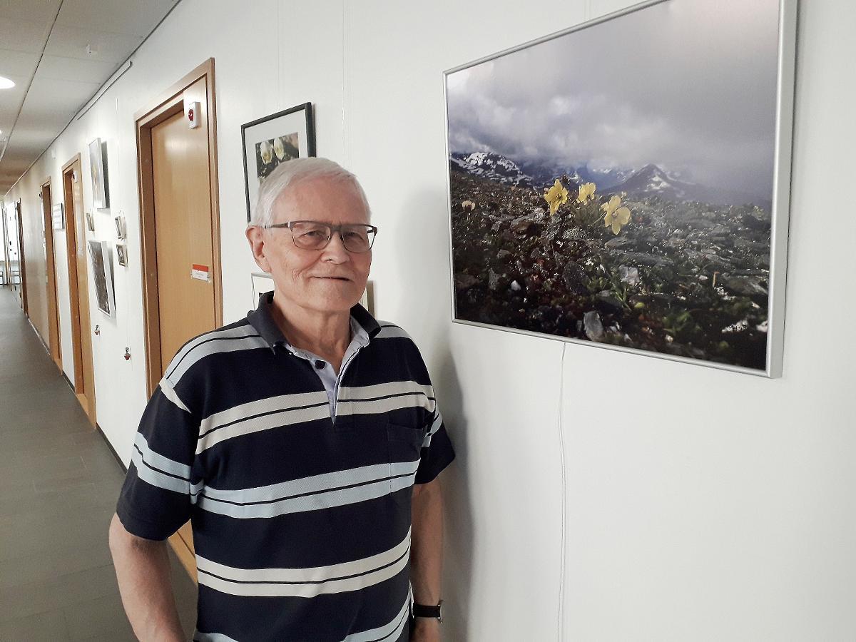 Tunturien kukat ovat valloittaneet Matti Häkkisen sydämen. Innokas valokuvauksen harrastaja pelkää niiden katoavan kokonaan ilmastonmuutoksen myötä.