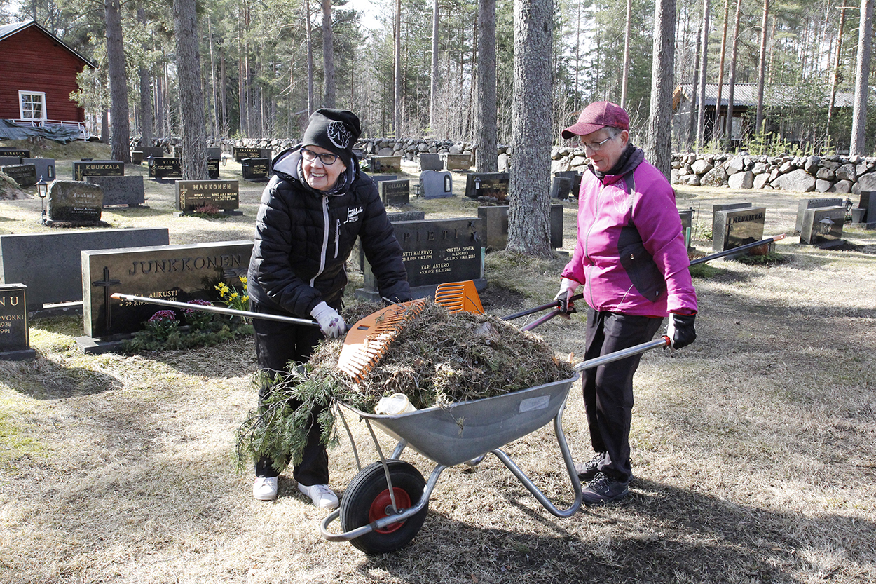 Liisa Kokko laittaa ruohoa haravalla kottikärryyn ja Aila Sumukari pitää kiinni kottikärryistä.