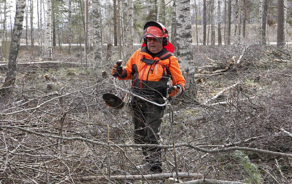 Timo Pietilä raivaa suojavarusteissa risukkoa.