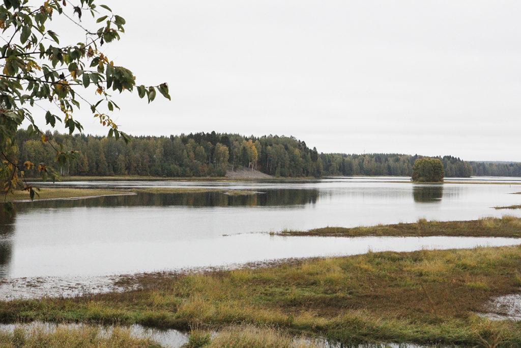 Jokimaisemaa Koortilan rannasta.